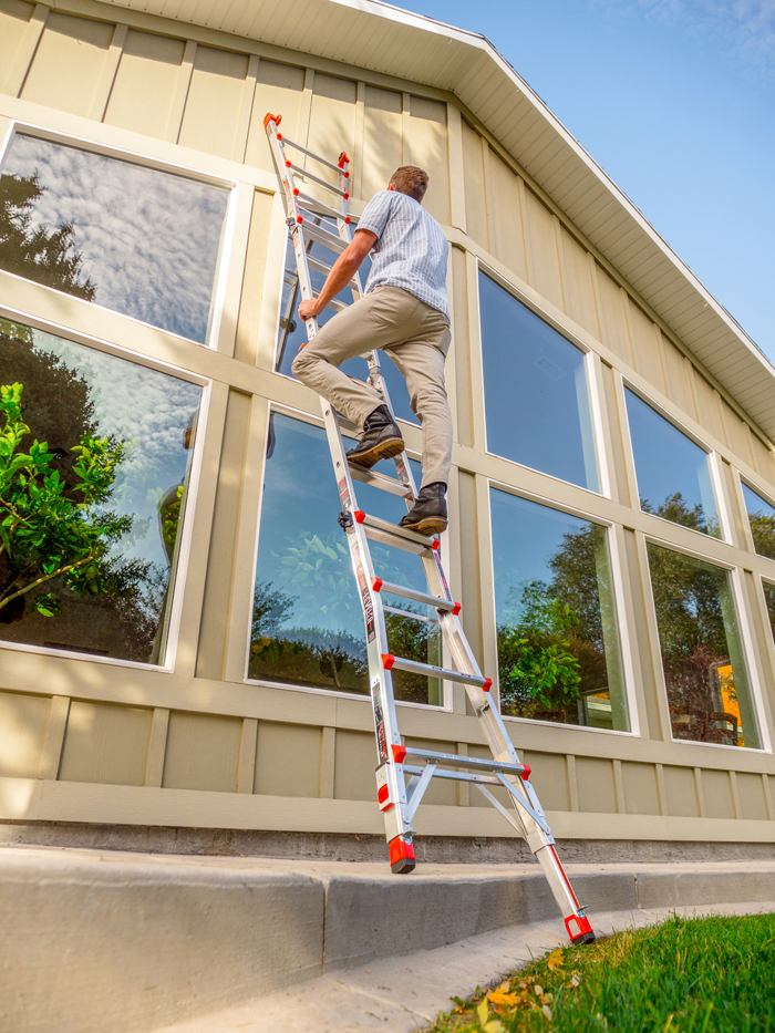 Little-Giant-Ladder-Systems